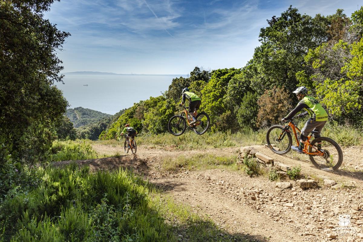 Tre biker percorrono un trail per MTB con un salto, sullo sfondo il mare dell'arcipelago Toscano.